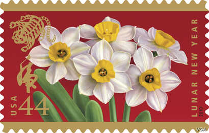 Because it blooms early, the fragrant narcissus has become the symbolic flower of the Chinese Lunar New Year. (USPS)