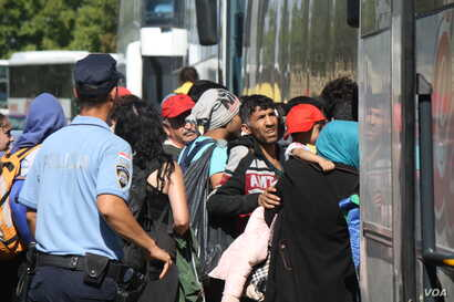 Hundreds of refugees waited for hours in the sun for buses, later ignoring police orders to stay in lines and rushing the vehicles, 23 September 2015 (VOA Photo By: H.Murdock Bapska, Croatia.)