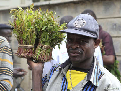 A vendor walks away with bundles of qat leaves from an open air wholesale market in Kenya's capital Nairobi, July 10, 2013.
