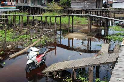 Bridges above roads link houses to cope with regular flooding, Kalanis village, South Barito, Central Kalimantan, Indonesia. (B. Hope for VOA)