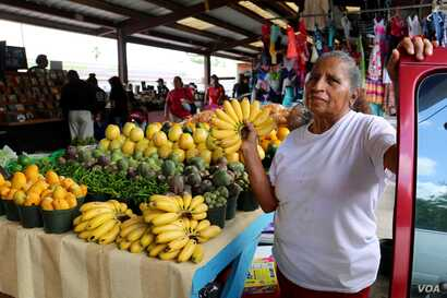 Maria Trinidad, from Guerrero, Mexico, runs a fruit and vegetable stand at Sunny Flea Market in Houston. (R. Taylor/VOA News)