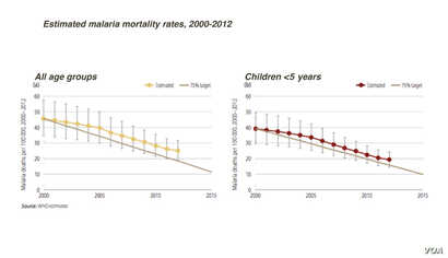 Malaria mortality rates, by age groups, 2000-2012