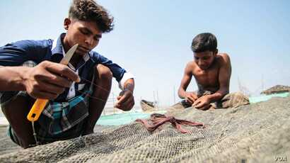 Young fishermen at work on Kutubdia. (J.Owens/VOA)