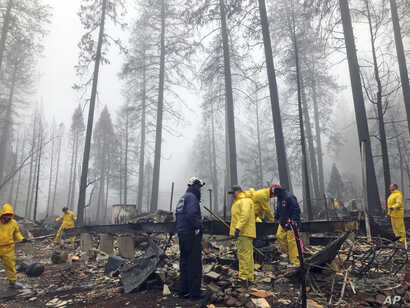 After a brief delay to let a downpour pass, volunteers resume their search for human remains at a mobile home park in Paradise, Calif., Nov. 23, 2018. Task force leader Craig Covey says his team is doing a second search because there are missing peop