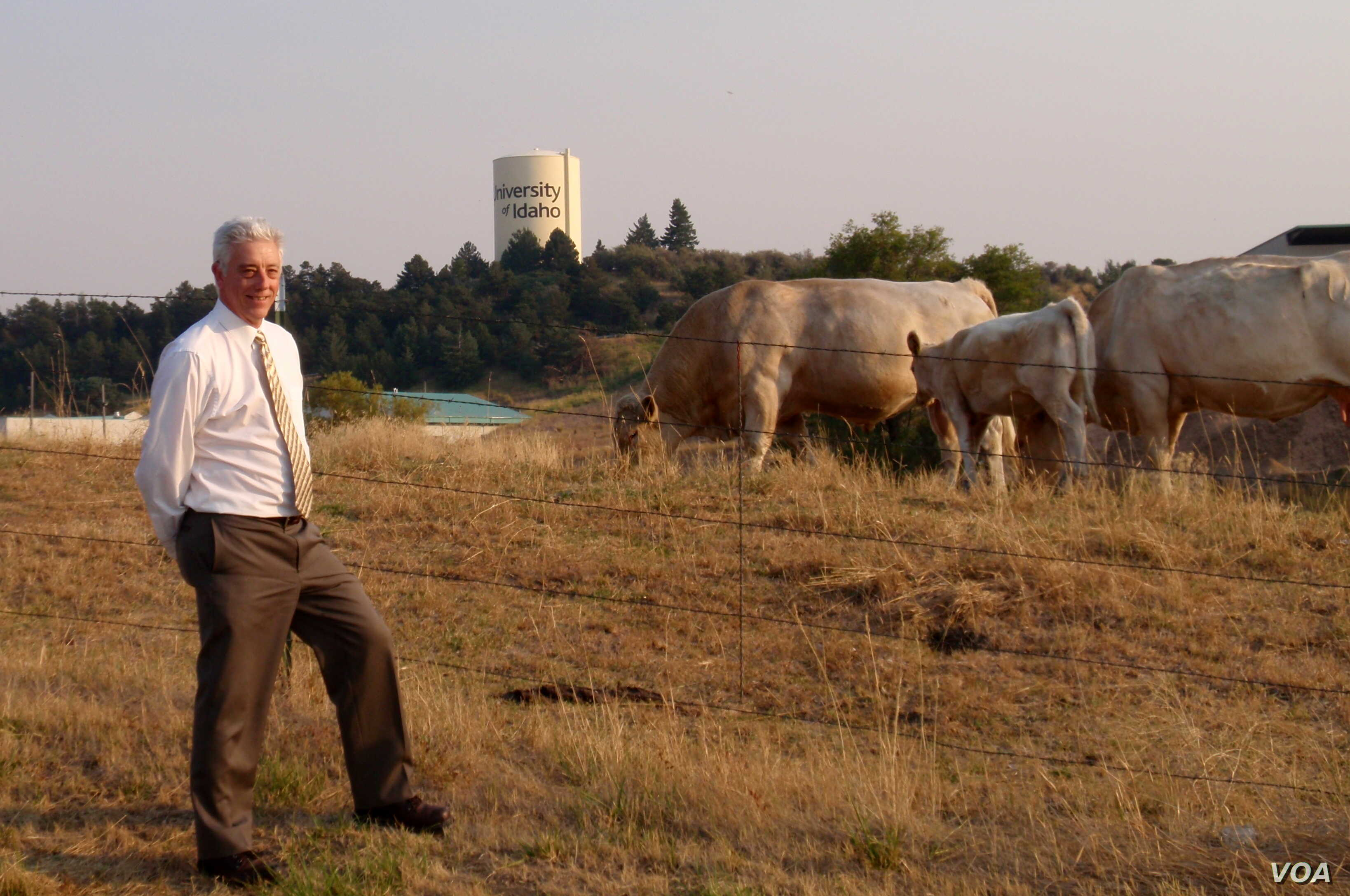 University of Idaho Professor Rod Hill with part of the university's purebred herd (VOA/T. Banse)