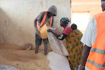 A refugee receiving maize at Dzaleka refugee camp in Malawi (photo taken by Lameck Masina).