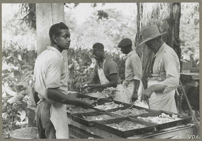 Cooking a fried supper as a benefit picnic church supper in Bardstown, Kentucky, in August of 1940.