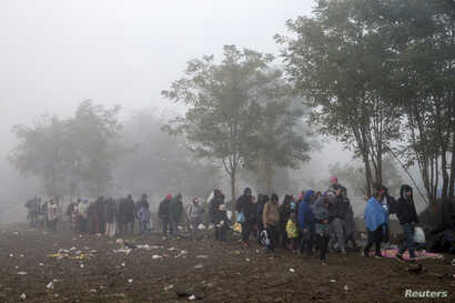 Migrants walk through a field trying to cross the border with Croatia near the village of Berkasovo, Serbia October 23, 2015.