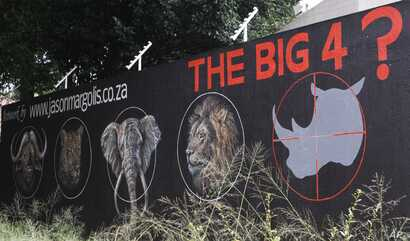 Mural calls for halt to rhino poaching in bid to save species from extinction, Johannesburg, South Africa, Sept. 18, 2013.