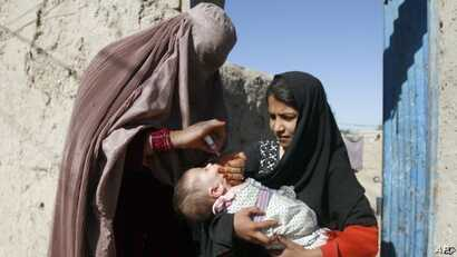 Polio cases have been reported in five Afghan provinces this year.