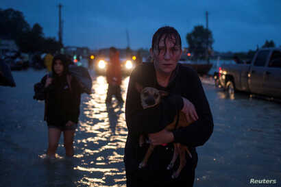 A woman holds her dog as she arrives to high ground after evacuating her home due to floods caused by Tropical Storm Harvey along Tidwell Road in east Houston, Texas, U.S. August 28, 2017.