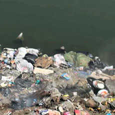 Polluted Nile River