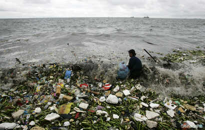 File - A man collects recyclable plastic materials, washed ashore by waves  in Manila.