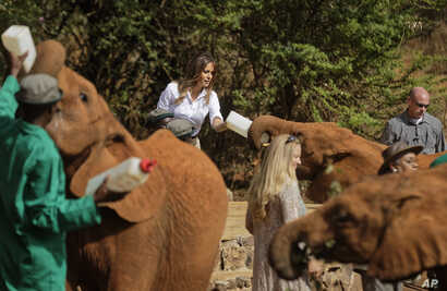 U.S. first lady Melania Trump feeds a baby elephant milk with a bottle, at the David Sheldrick Wildlife Trust elephant orphanage in Nairobi, Kenya, Oct. 5, 2018.
