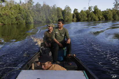 FILE - Conservationists scan a swath of jungle along a river in Sungai Mangkutub, Central Kalimantan, Indonesia, Jan. 5, 2016.