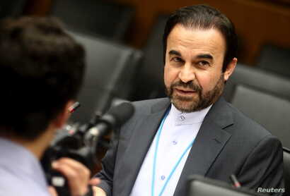 Iran's ambassador to the International Atomic Energy Agency (IAEA) Reza Najafi waits for the start of a board of governors meeting at the IAEA headquarters in Vienna, Austria, June 10, 2015.