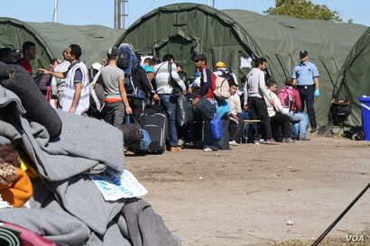 Croatian police, some in riot gear, organize lines of travelers in an attempt to register them.  By late Wednesday, refugees said they had given up, and were shuttling them across the country, Opatovac, Croatia, Sep 23, 2015 (VOA Photo By: H. Murdock...