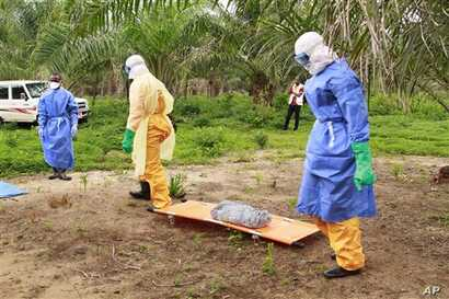 In this photo taken on Friday, June 19, 2015, the wrapped remains of a new born child suspected of contracting the Ebola virus, lays on a stretcher as health workers, dressed in Ebola protective gear, move the body for burial in Dubreka, Guinea. Desp