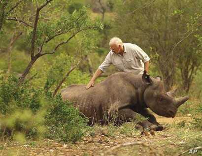 Dr. Flamand assists with the release of a black rhino on land in KwaZulu-Natal, South Africa