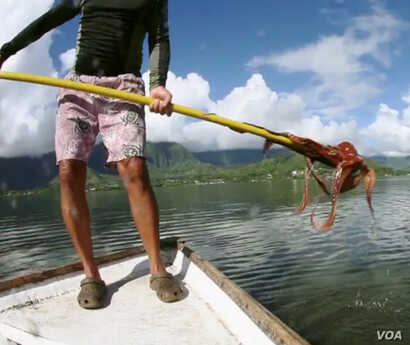 The Kawelo family in Hawaii has been fishing for octopus for eight generations.