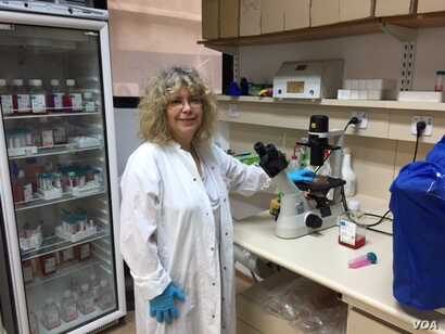 Microbiologist Rina Rosin-Arbesfeld in her lab in the medical school at Tel Aviv University researches a possible ancestral link to colorectal cancer. (Photo courtesy of Tel Aviv University)