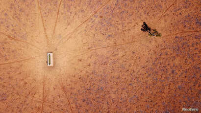 A lone tree stands near a water trough in a drought-effected paddock on Jimmie and May McKeown's property on the outskirts of Walgett, in New South Wales, Australia, July 20, 2018.