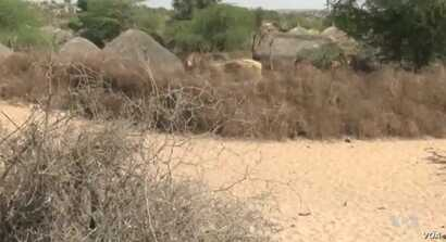 Many villages in the Tharparkar area are far from cities, with little or no access to a road network.