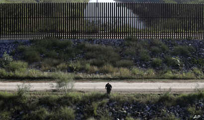 A U.S. Customs and Border Patrol agent searches for suspected illegal immigrants passing through the area in Hidalgo, Texas, Nov. 16, 2016.