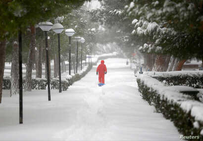 A boy walks under snow-covered trees during a snowfall in Istanbul, Turkey, Jan. 7, 2017.