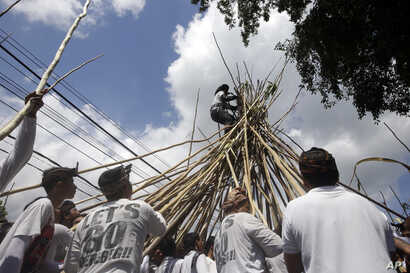 "A man stands on a cone of sticks during a Hindu ritual called ""Mekotek,"" a traditional stick fighting ceremony used to celebrate the triumph of good over evil, in Bali, Indonesia, Saturday, Nov. 11, 2017."