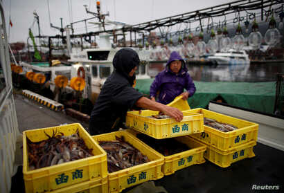 Squid fishermen land a catch of squid at Hakodate wholesale market in Hakodate, Hokkaido, Japan, July 20, 2018.