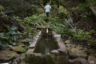 "In this Dec. 22, 2017 photo, Jose Luis Gonzalez walks through a ravine known as ""La Raja de Rosa,"" where people from Barrio Patron get their water, in Morovis, Puerto Rico."