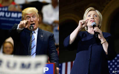 Both Republican Donald Trump and Democrat Hillary Clinton have met some criticism from fact checkers.