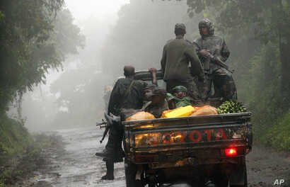 Congolese M23 rebels carry goods in the back of a truck near the Congo-Uganda border town of Bunagana, DRC, December 5, 2012.