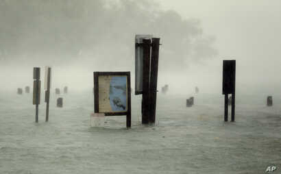 Flood waters rise around signs at the Haulover Marine Center at Haulover Park as Hurricane Irma passes by, Sept. 10, 2017, in North Miami Beach, Florida.