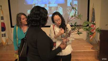 Korean/American artist Aimee Lee explains the role of the paper mulberry tree in making Hanji. (June Soh/VOA)