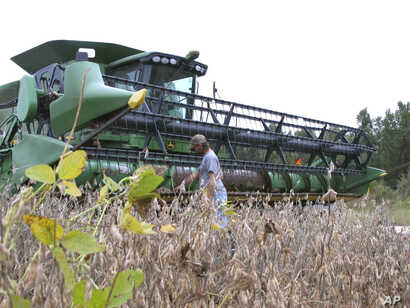 Farmer Jeremy Cannon checks his combine as he gets ready to harvest of his soybean crop, Oct. 5, 2016, at his farm in Turbeville, South Carolina.