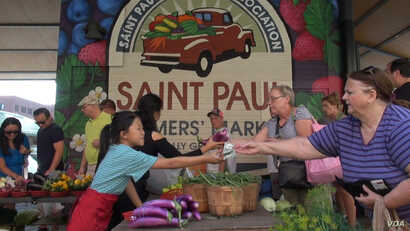 The St. Paul Farmer's Market was alive with transactions on a recent market day, bringing growers of fresh produce together with their customers. (J. Soh/VOA)