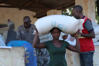 Flood survivors receiving donation of maize from world Food program in flood hit Chikwawa distrcit, Malawi.