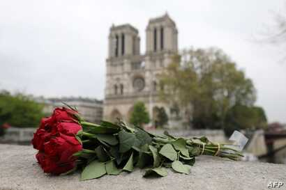 Roses have been laid near Notre Dame Cathedral a day after a fire devastated the cathedral in central Paris, April 16, 2019.