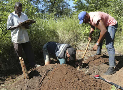 In this April 5, 2019, photo, Stephen Fonseca, center, places a bag with a spine into a small grave as Chief Moses Mukoto, left, writes the time of day in a notebook in Magaru, Mozambique.