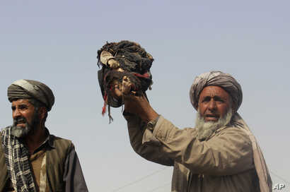 An Afghan man holds up the body of a child that was killed during clashes between Taliban and U.S.-backed Afghan security forces in Kunduz province, in northern Afghanistan, Nov. 3, 2016.
