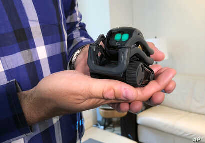 FILE - Anki Inc. CEO Boris Sofman holds Vector, the company's new home robot, in New York, July 30, 2018.