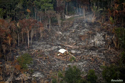 An aerial view shows a deforested plot of the Amazon near Porto Velho, Rondonia State, Brazil, Sept. 10, 2019.