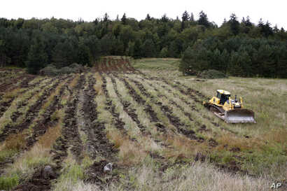 A bulldozer loosens the soil in a field in Monongahela National Forest, W.Va., on Aug. 27, 2019.