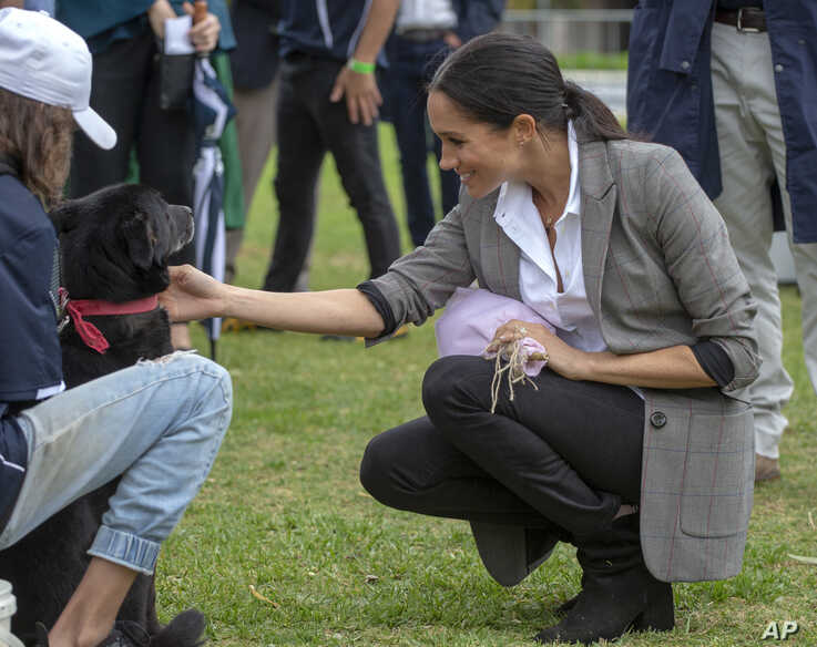 FILE - Meghan, Duchess of Sussex, pats a dog during a visit to a community picnic at Victoria Park in Dubbo, Australia, Oct. 17, 2018. Her Outland Denim jeans quickly sparked a buying fenzy.