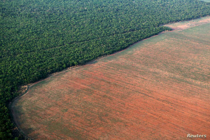 FILE - The Amazon rainforest (L), bordered by deforested land prepared for the planting of soybeans, is pictured in this aerial photo taken over Mato Grosso state in western Brazil, Oct. 4, 2015.