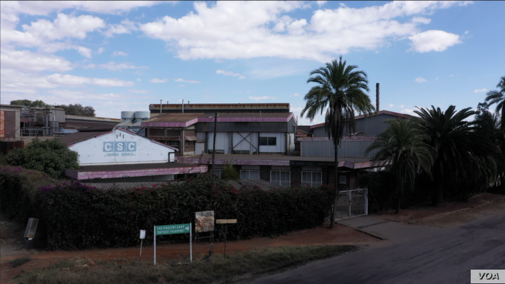 At its peak, this state-owned Cold Storage Company, in Bulawayo, Zimbabwe was the biggest African beef exporter to the EU.