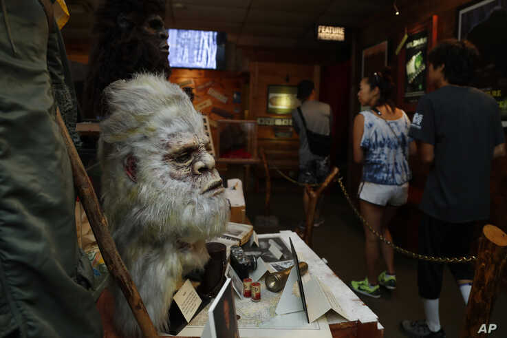 This Aug. 8, 2019, photo shows a Bigfoot mask on display at Expedition: Bigfoot!, The Sasquatch Museum in Cherry Log, Georgia.