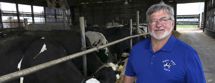Dave Daniels stands in front of some of his dairy cows in wisconsin ove, Wis., on Tuesday, Aug. 6, 2019. He voted…